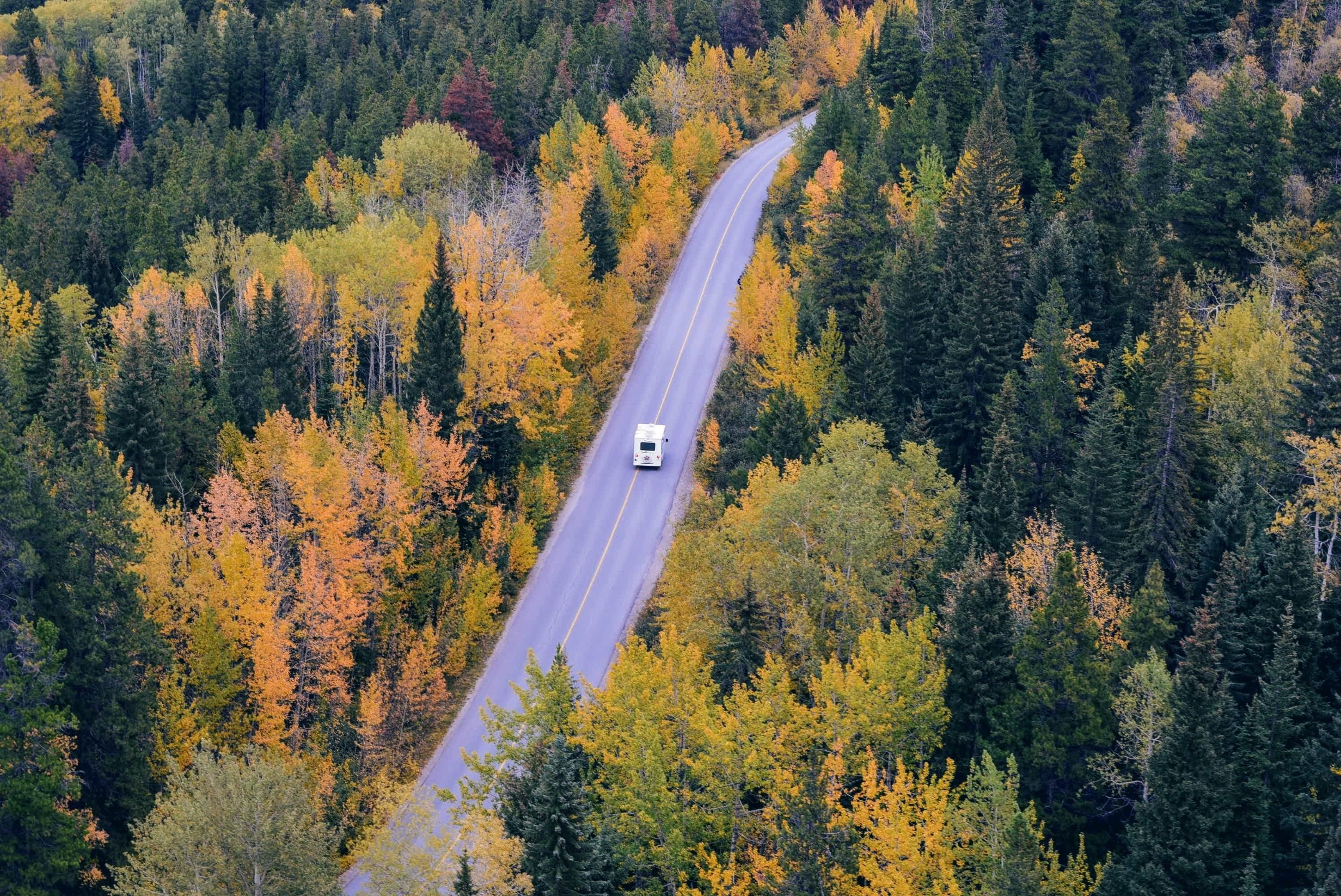 Husbil på en skogsväg.